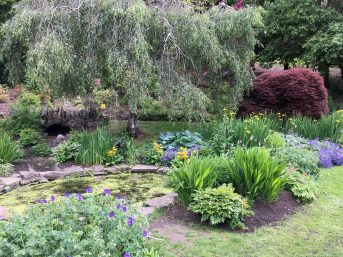 Castlebank Park, Horticultural Training Centre and Community Hub